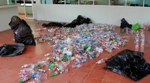El Partido Verde fomenta la cultura del reciclaje