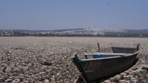 Ha provocado la sequía pérdidas por 20 mil mdp