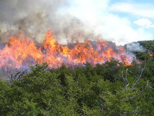 Se espera una difícil temporada de incendios forestales