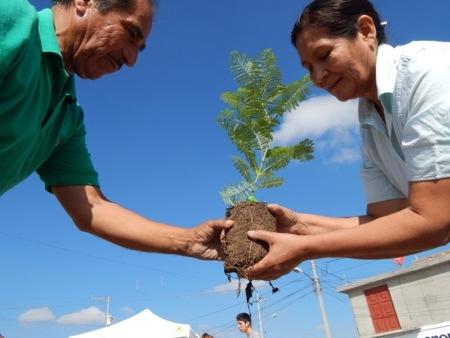 El PVEM realiza acciones para contar con más áreas verdes