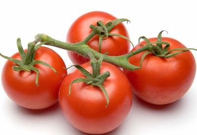 La industria del tomate reunida en San Luis Potosí