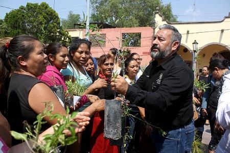 Reforestarán la Delegación de Pozos con 18 mil árboles