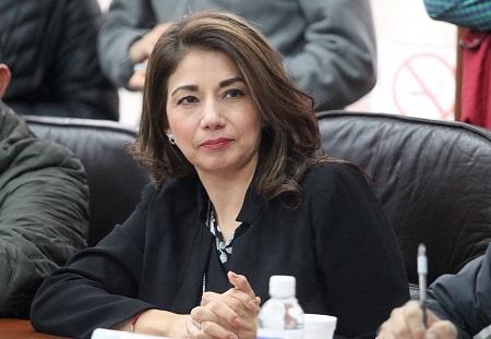 Diputada pide dialogo y respeto, para que puedan rendir informe del Congreso