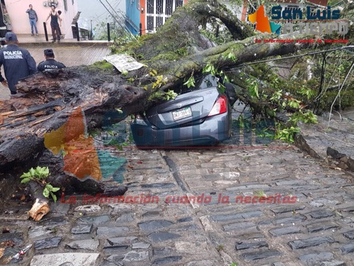 Tromba causa daños en varios municipios de la Zona Huasteca [Fotogalería]