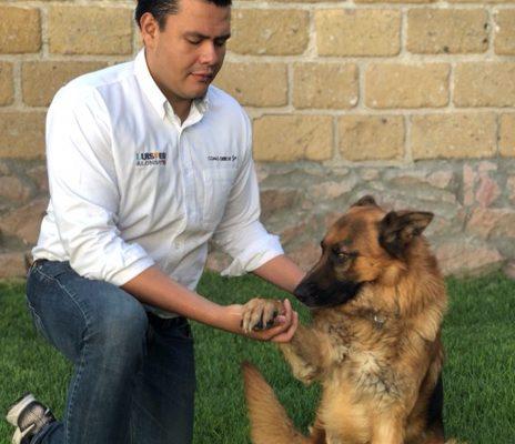 Mejor legislación de protección a los animales, promete LuisFer Alonso
