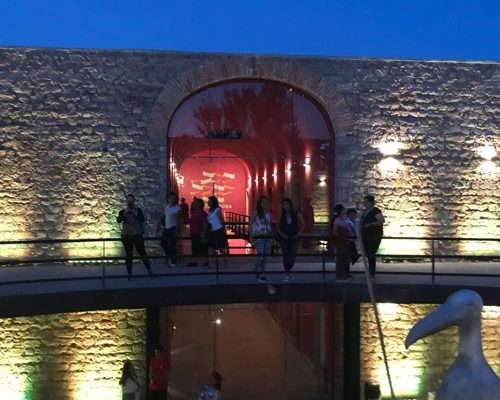 """Museo Leonora Carrington, recibe más de 300 visitantes en su segunda """"Noche de Museo"""""""