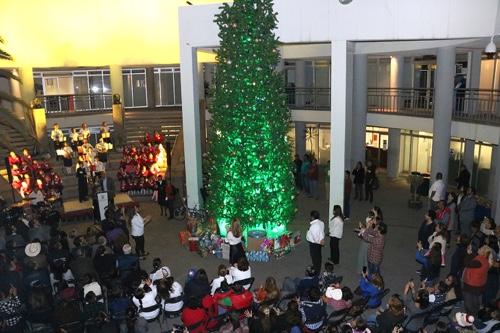 Enciende Gobierno Municipal, árbol de navidad