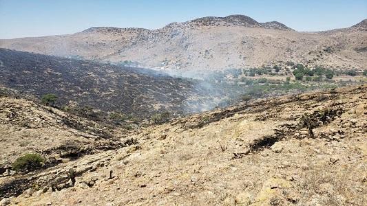 PC refuerza el combate al incendio forestal en El Zapote, Rioverde